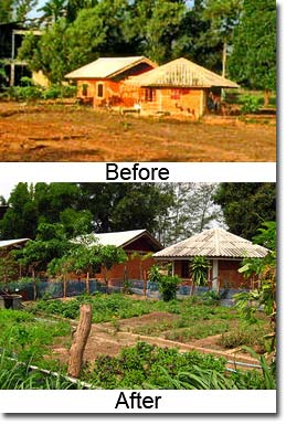 Thailand Permaculture Blog